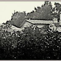 Крыши старинной усадьбы :: Любовь