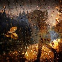 Какие слова у дождя? :: Елена Строганова