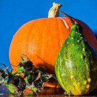 Осень :: Lucky Maloy