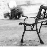 A bench in the church park. :: Boris Berg