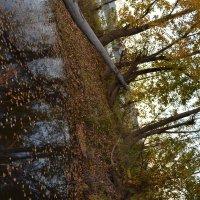 Осенний пейзаж :: Александр Таннагашев