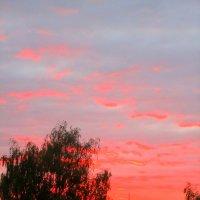 закат :: alena kovsh