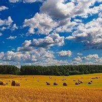 Лето :: Артем Фисенко