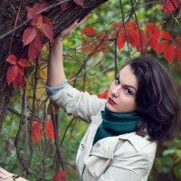 осень :: Катрин Чес