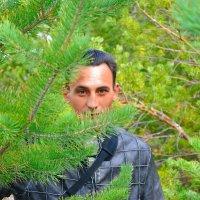 я в лесу :: Вадим Серпов