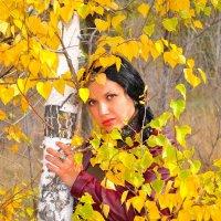 осень красивая пора :: Вадим Серпов