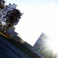 солнышко осенью :: леська шарейко