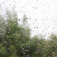 дождь :: Владимир Копылов