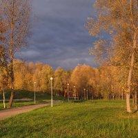 Осень и солнце :: Владимир