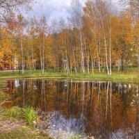 Отражение осени :: Владимир