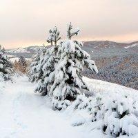 5 октября, суббота, снежное утро в Хакасии (3) :: MaOla ***