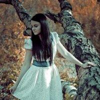 В лесу. :: Екатерина Гартман