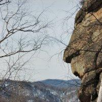 Каменный страж :: Irina *