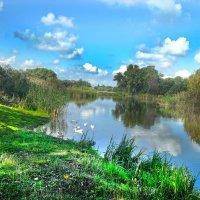 В реку смотрятся облака... :: Татьяна Хлудеева