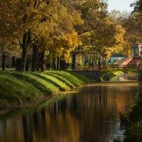 Царское село. Китайский мостик. :: Наталия Шишкина