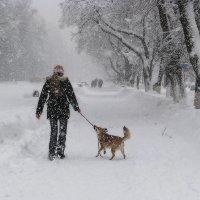 Человек собаке друг ... :: Светлана Шестова