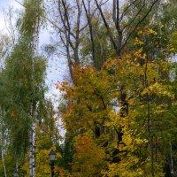 Осень.. :: Viktor Nogovitsin