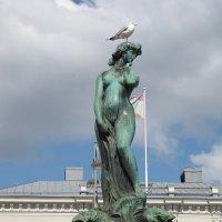 Пернатые и великие. Хельсинки. Памятник Аманде :: Ольга Иргит