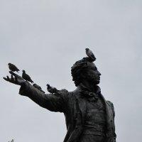 Пернатые и великие. Санкт-Петербург. Памятник Александру Сергеевичу :: Ольга Иргит