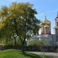 парк :: Евгений Белоусов