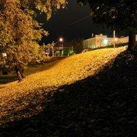 autumn ... :: Роман Шершнев