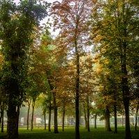 Осень в парке :: Галина Брюховецкая