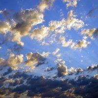 небо :: Надежда Лунева