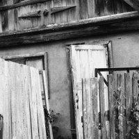 Заброшенный дом :: Tanechka Shavyrina