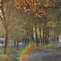 Осенние зарисовки :: Сергей Коновалов