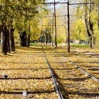 Осень :: Олег Карташов