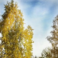 Осенняя модель :: Дмитрий Ларионов