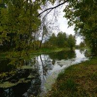осень на реке :: Светлана ***
