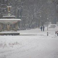 Зимний парк. :: Сергей Фадеев