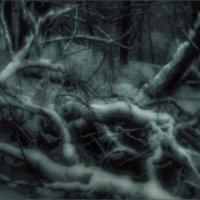 Монокль зима :: Nn semonov_nn