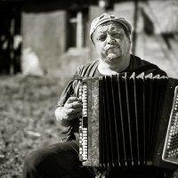 Гармонист :: Антон Климов