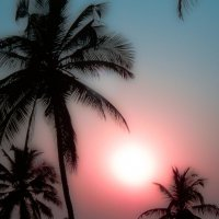 Индийский закат. :: Edward J.Berelet