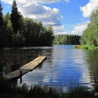 У озера :: Сергей В. Комаров