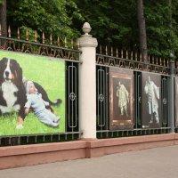 Ожившие картины на проспекте Независимости в Минске :: Nonna