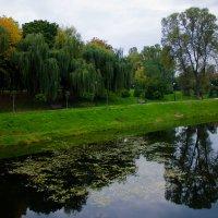 Осенний парк :: Алексей Гончаров