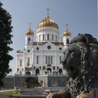 Храм Христа Спасителя :: Дмитрий Сушкин