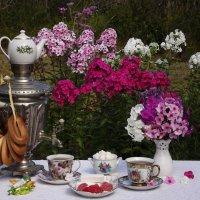 Прекрасного августа,друзья,теплых и солнечных дней! :: Нина Андронова