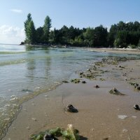 Пляж :: ОКСАНА ЮРЬЕВНА ШВЕЦ