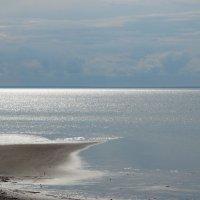 На Белом море :: Андрей Зайцев