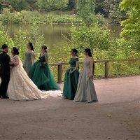 Свадебный танец :: Владимир Манкер