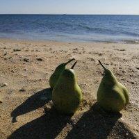 Дикий пляж :: Сергей Владимирович Егоров