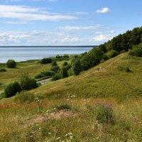 Озеро Плещеево с Александровой горы. :: tatiana