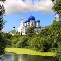 Утки плавают в пруду... :: Vlad Сергиевич