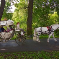 Прогулка в парке :: Наталия П