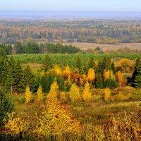 Осенний пейзаж :: Татьяна Н.