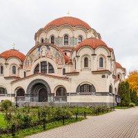 Воскресенский Новодевичий монастырь :: navalon M